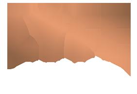 לוגו החברה לייפ